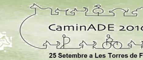 IVa CaminADE