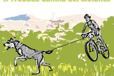 3r Triatló Caní Castellcir