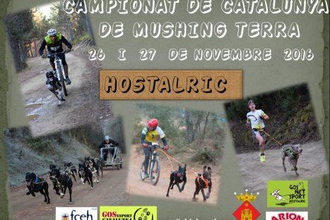 Campionat de Catalunya de Mushing Terra
