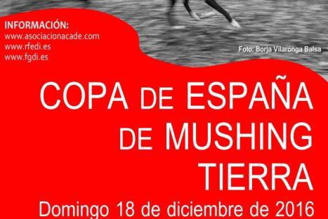 Copa España de Mushing Tierra 2016 – A Estrada (Pontevedra)