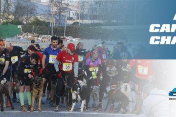 VIII Canicross & Mushing de l'Anoia – AEM Canicross Challenge