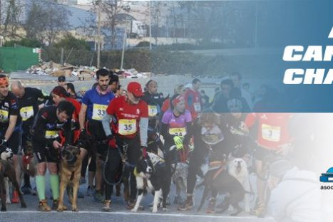 Mushing y Canicross Serra de Galliners – Premio Dogathlon