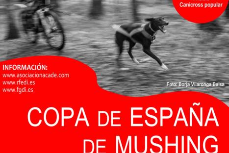 Copa España de Mushing Tierra 2017 – A Estrada (Pontevedra)
