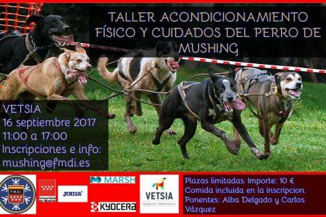 Taller Acondicionament Físic i Atencions del Gos de Múixing – Vetsia