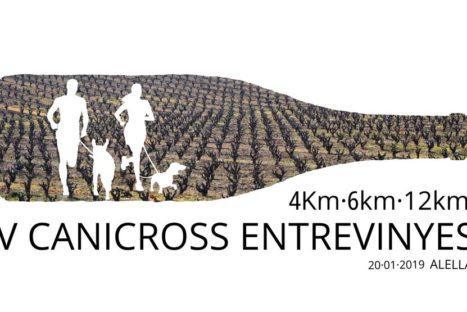 V-Canicross EntreVinyes Alella